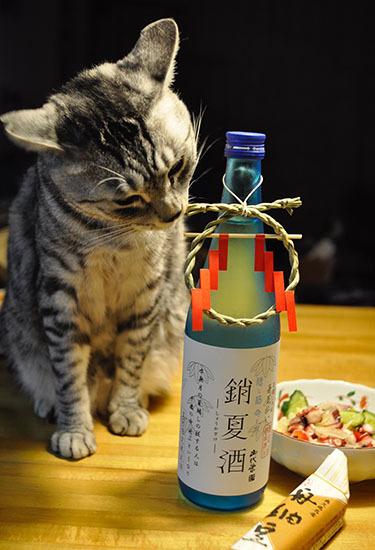 170630_luck_shokazake.jpg