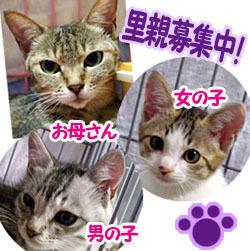 bannerboshu_qu_new.jpg