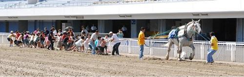170909ばん馬と綱引き対決