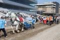 170909 ばん馬イベント ばん馬と綱引き対決-05