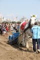170909 ばん馬イベント ばん馬と綱引き対決-06