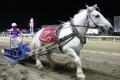 170909 ばん馬イベント ばん馬デモンストレーション走行-03