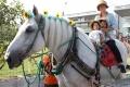170909 ばん馬イベント ばん馬とのふれ合い-01