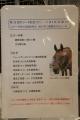 171106 光の馬ロジータ展示-02