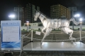 新しい光の馬ロジータ-01