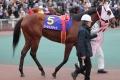 171231 東京2歳優駿牝馬-04