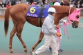 171231 東京2歳優駿牝馬-07