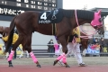 180102 ゴールデンホース賞-06