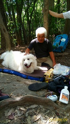 犬とOさん