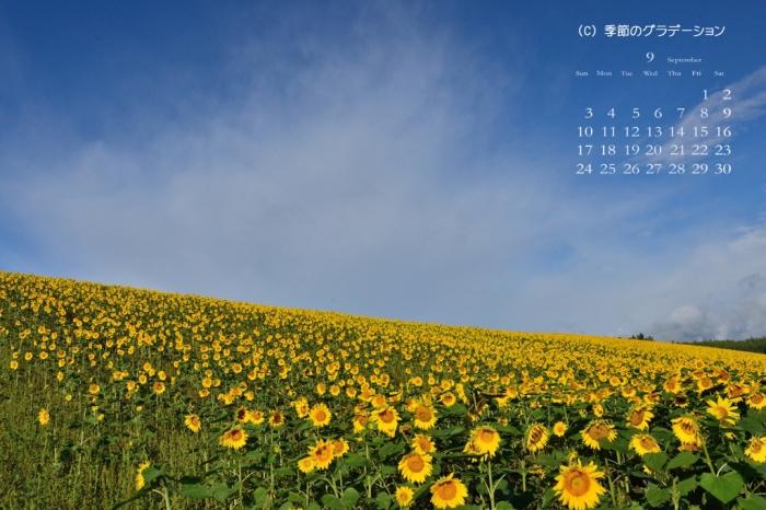 壁紙カレンダー9月01