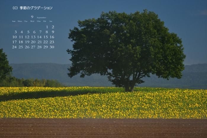 壁紙カレンダー9月10
