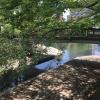 みどり橋4