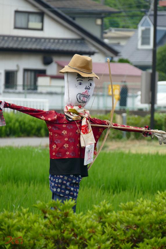 20170717キツネノカミソリ_稲荷山06