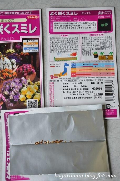 よく咲くスミレ種まき日記2