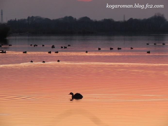谷中湖の夕景