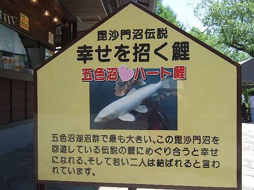 2007_0514裏磐梯0031