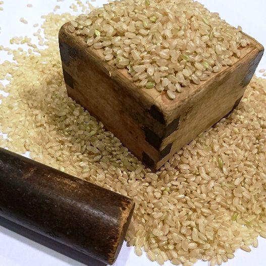 さわのはな玄米 玄米ベーグル