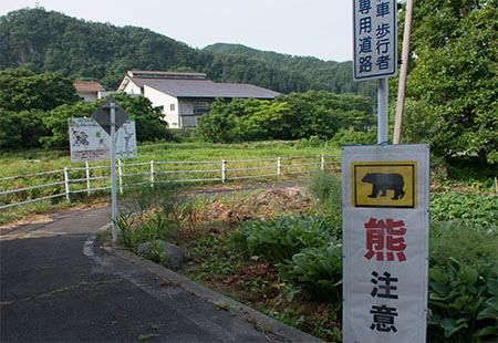 70629-40.jpg