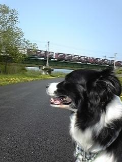2011/5/26