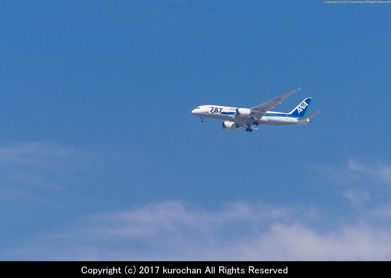 BSF_7026-2.jpg
