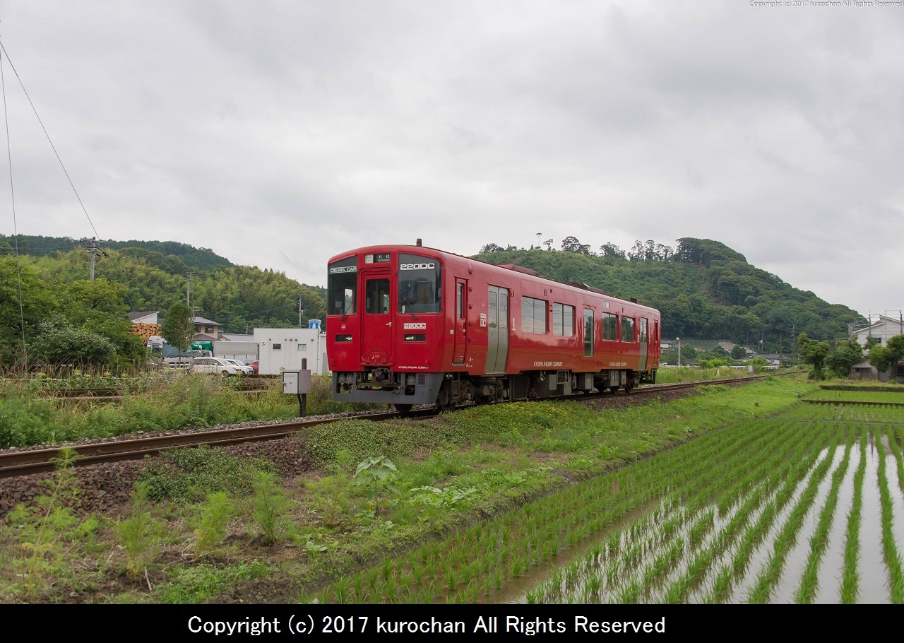 BSF_7697-2.jpg