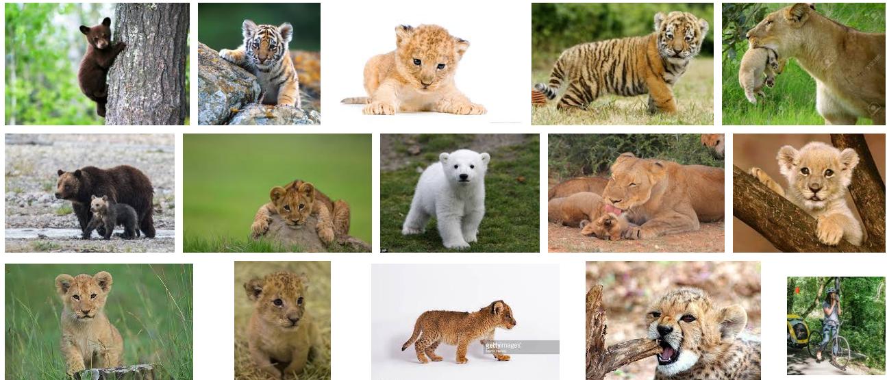 cub Google 検索