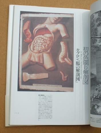 荒俣宏 解剖の美学 03