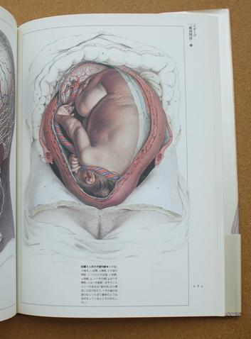 荒俣宏 解剖の美学 09