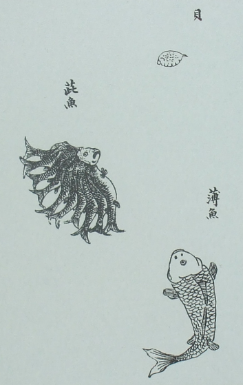 怪奇鳥獣図巻 10