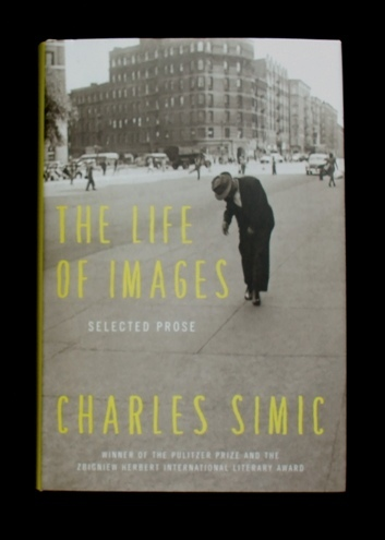 simic - the life of images 01