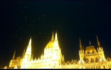 中欧 議事堂の上のカモメ キャプチャ