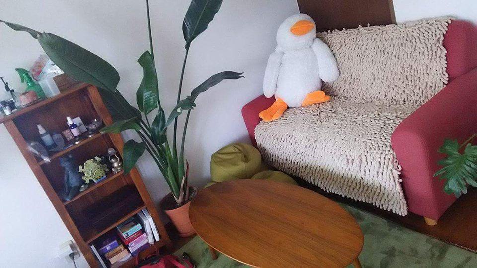 松山とんとんカフェ2