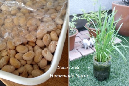 homemade natto