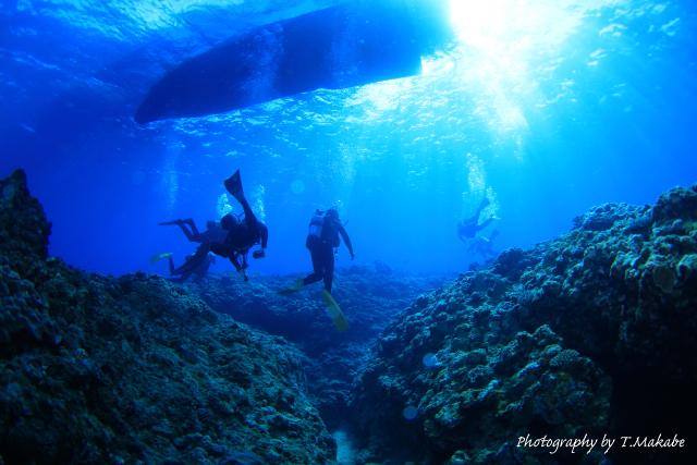 沖縄慶良間諸島久場島の水中景観