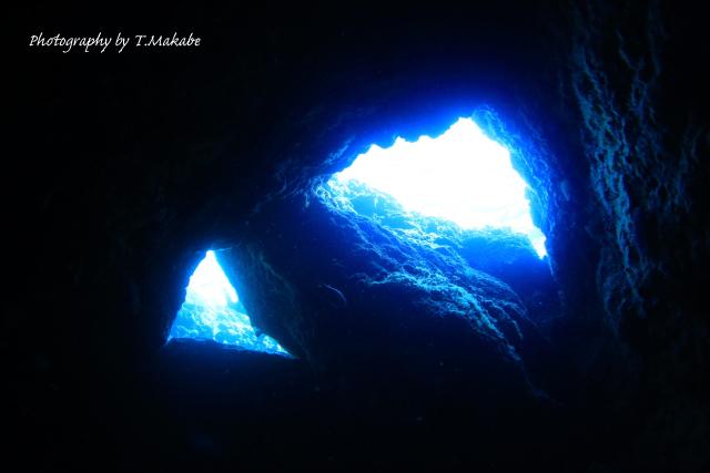 沖縄慶良間諸島久場島の水中景観1