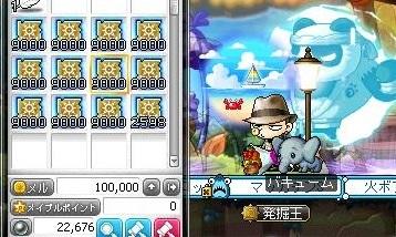 Maple16147a.jpg