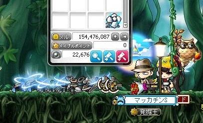 Maple16167a.jpg