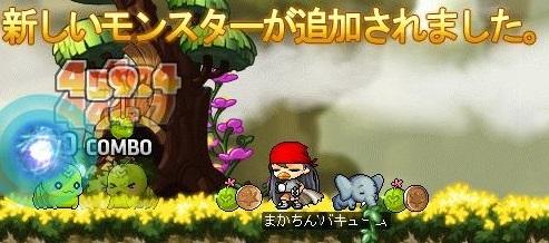 Maple16317a.jpg