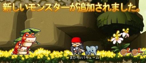 Maple16321a.jpg
