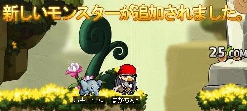 Maple16322a.jpg