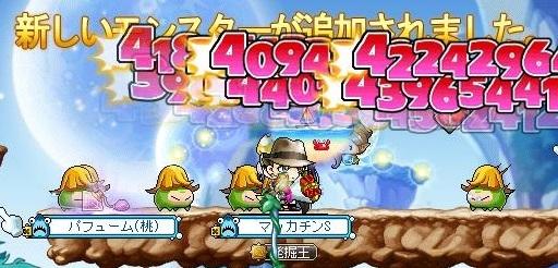Maple16327a.jpg