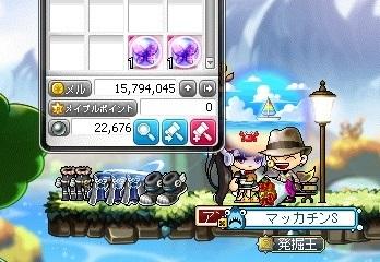 Maple16382a.jpg