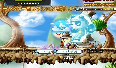 Maple16389a.jpg