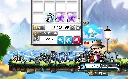 Maple16392a.jpg