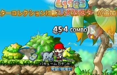 Maple16399a.jpg