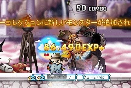 Maple16425a.jpg
