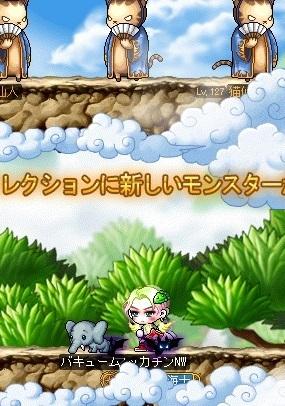 Maple16439a.jpg