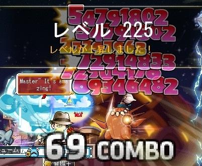 Maple16475a.jpg
