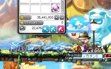 Maple16484a.jpg