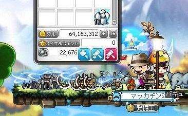 Maple16522a.jpg